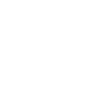 MPS foundation apple logo